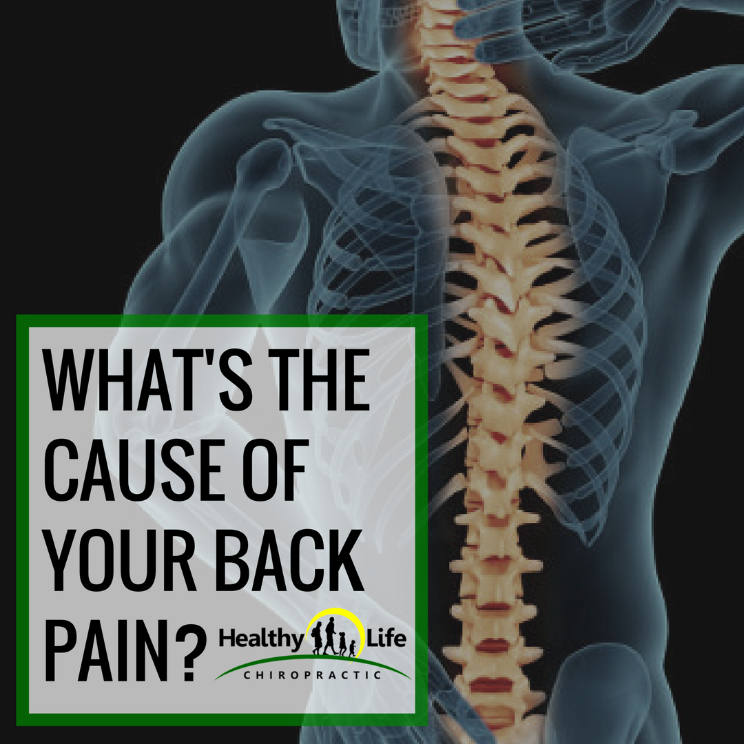 cause-back-pain-healthy-life-chiropractic.png