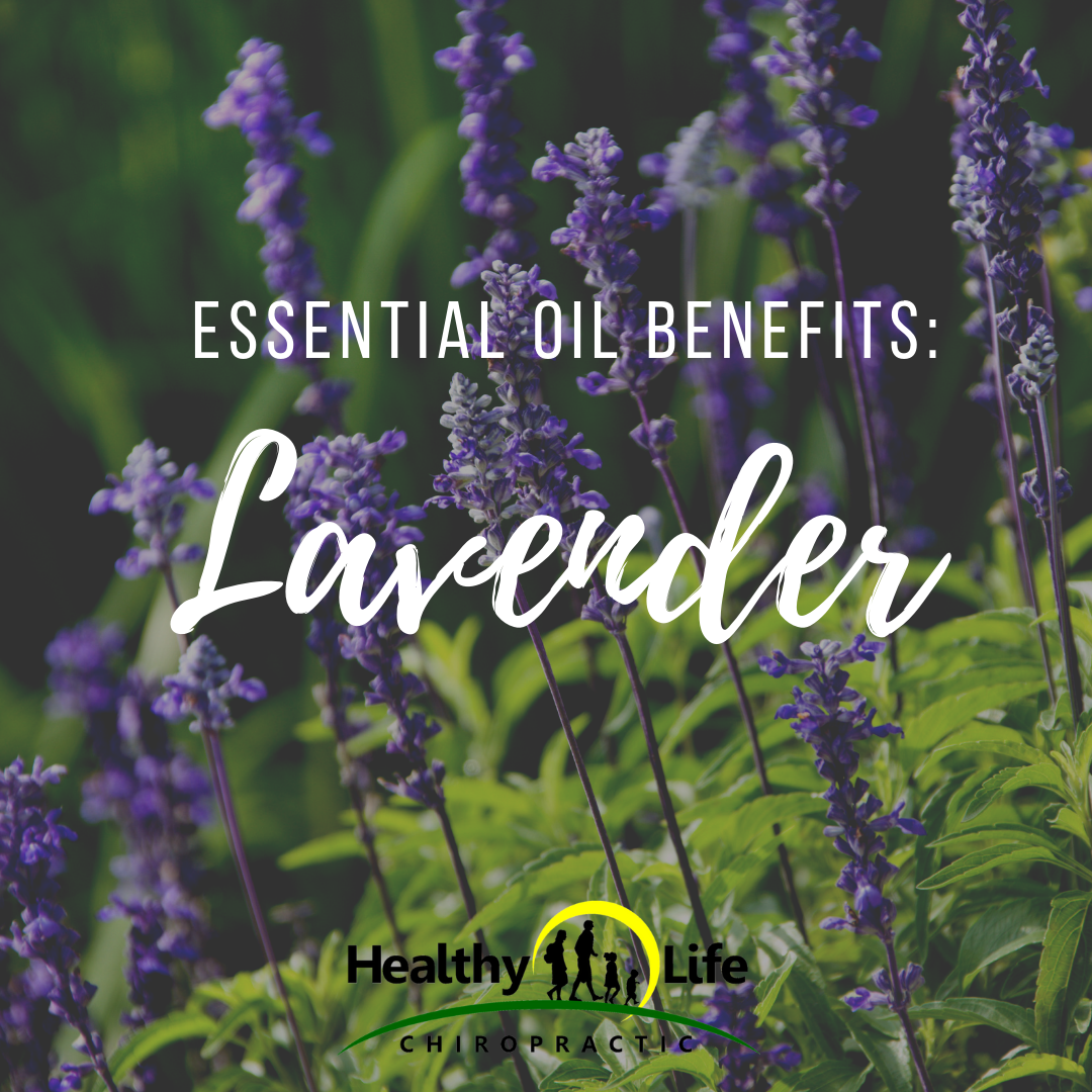 Essential Oil Benefits Lavender Healthy Life Chiropractic
