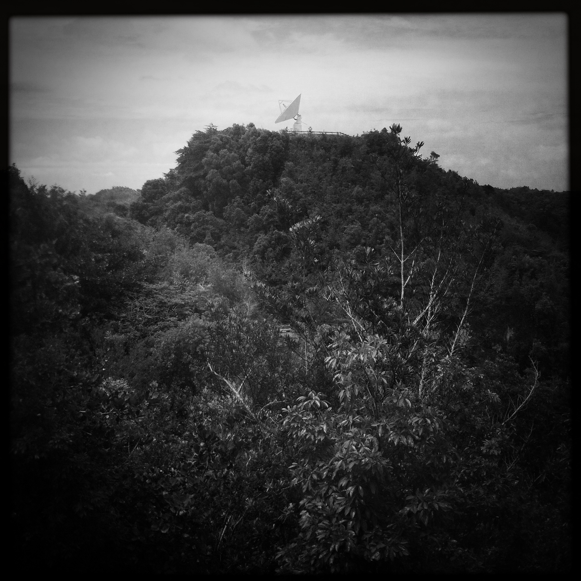 © Matt Hill  A little bonus shot of another radio telescope from Arecibo.