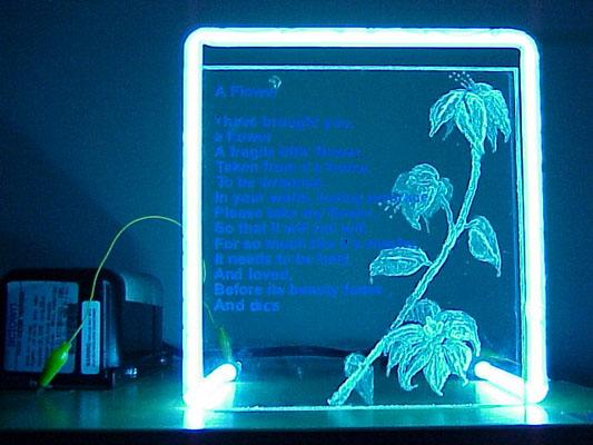 neonflower2.jpg
