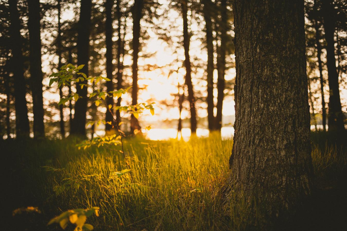 Jonathan_Kuhn_Photography_-6.JPG