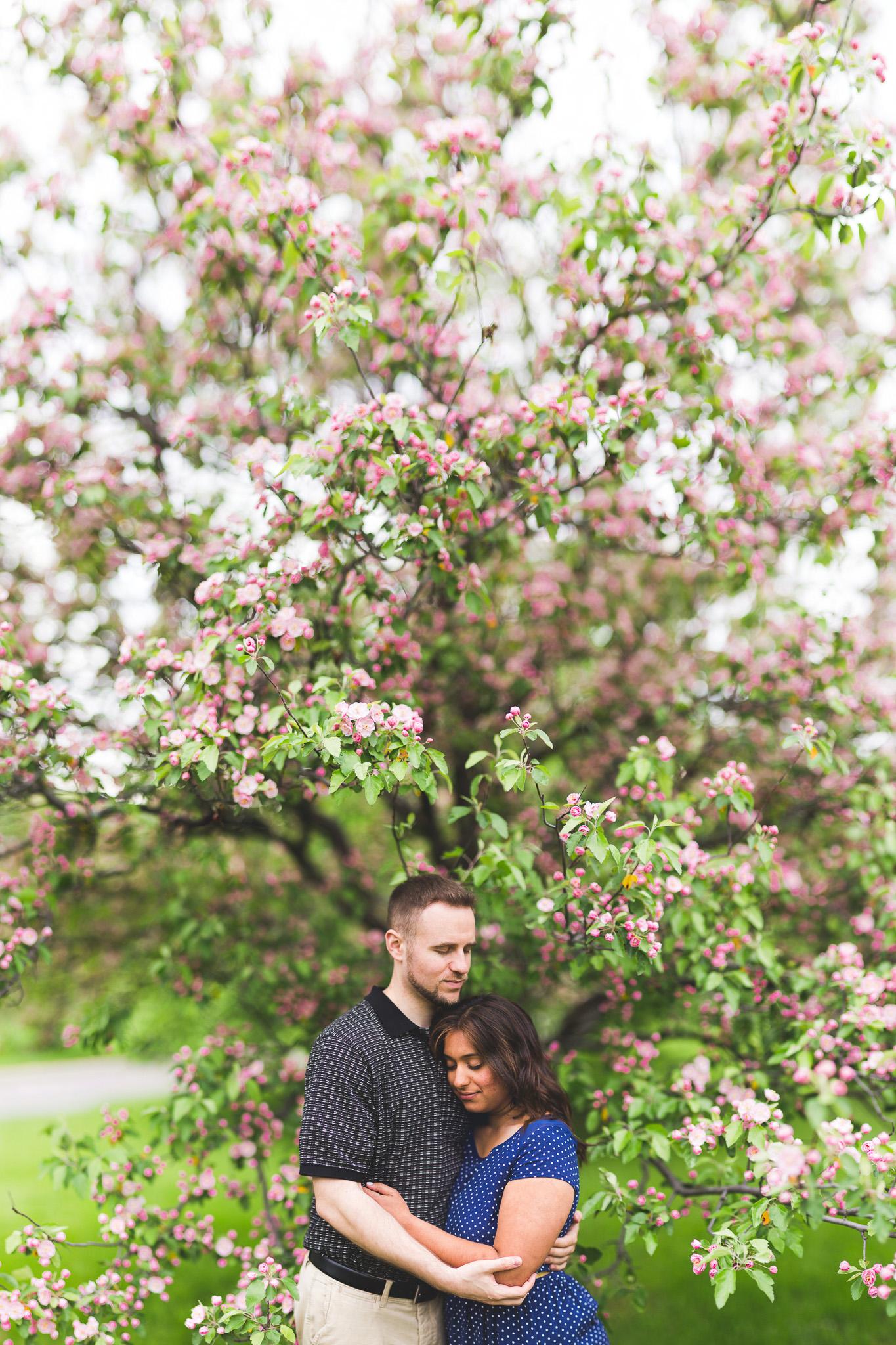 Ottawa-Brenizer-Cherry-Apple-Blossoms