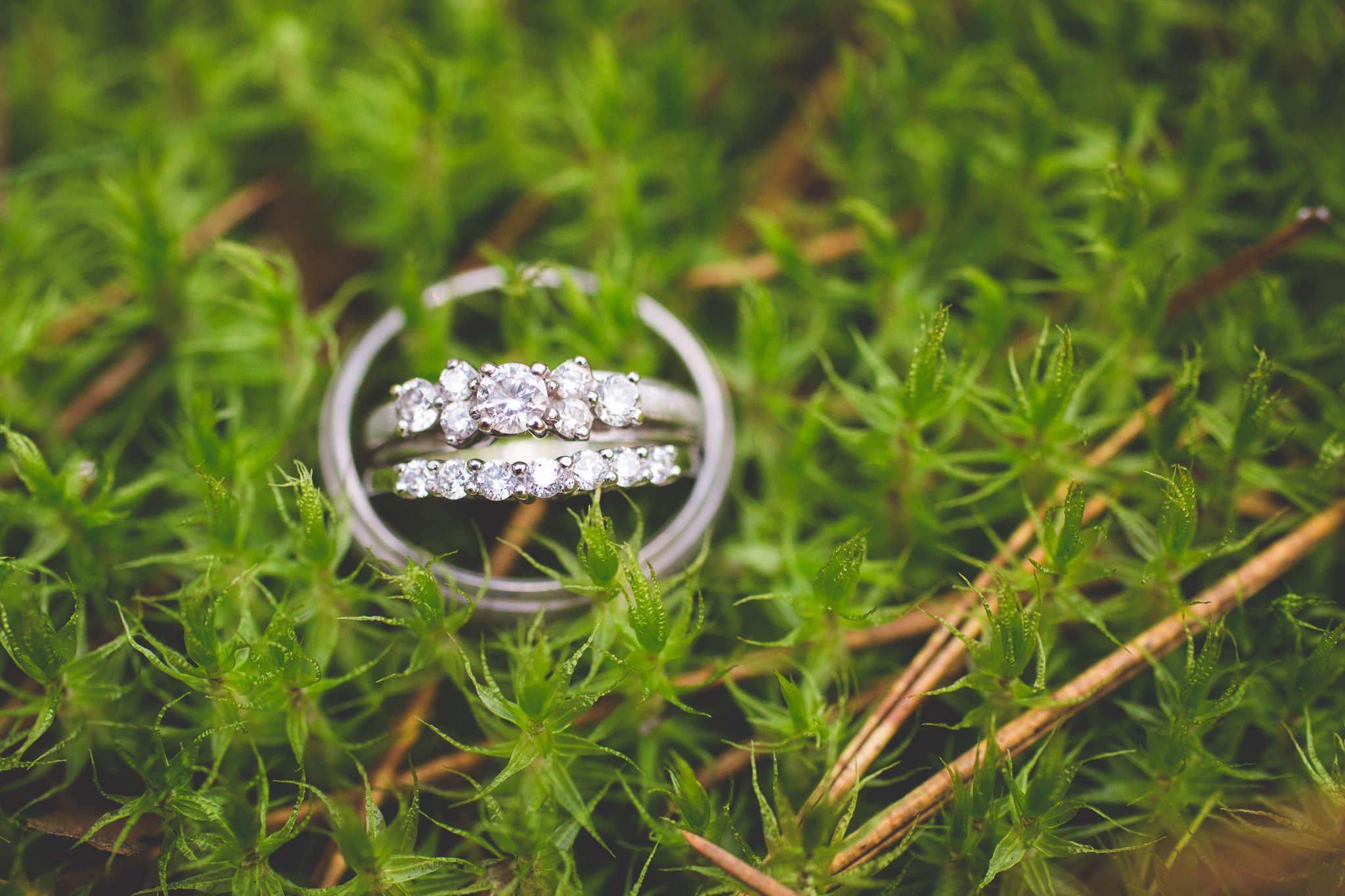 Mossy-Nature-Wedding