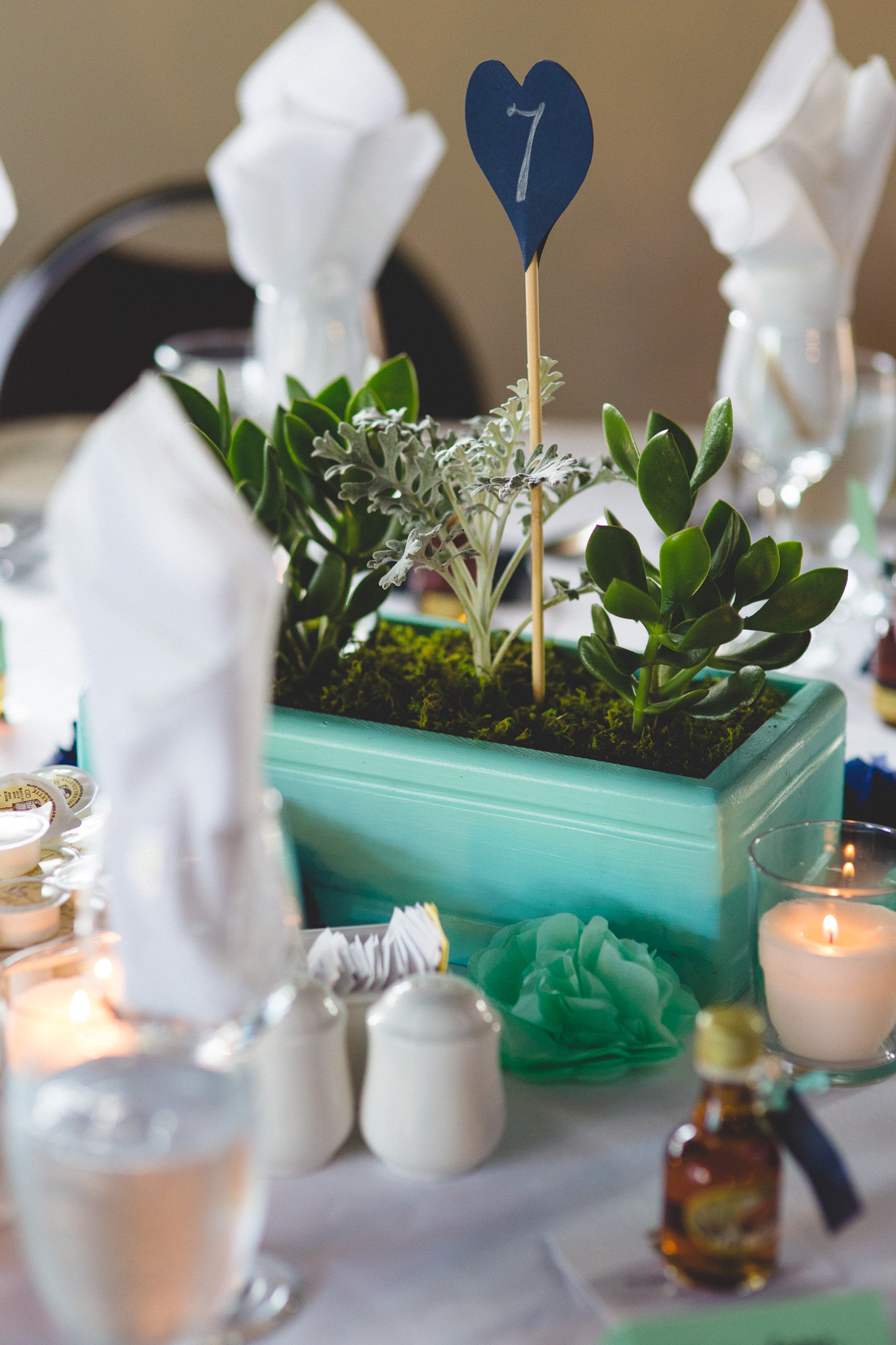 DIY-Succulent-Centerpieces
