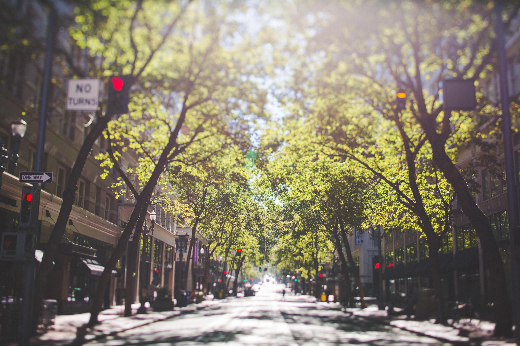 streets-of-portland