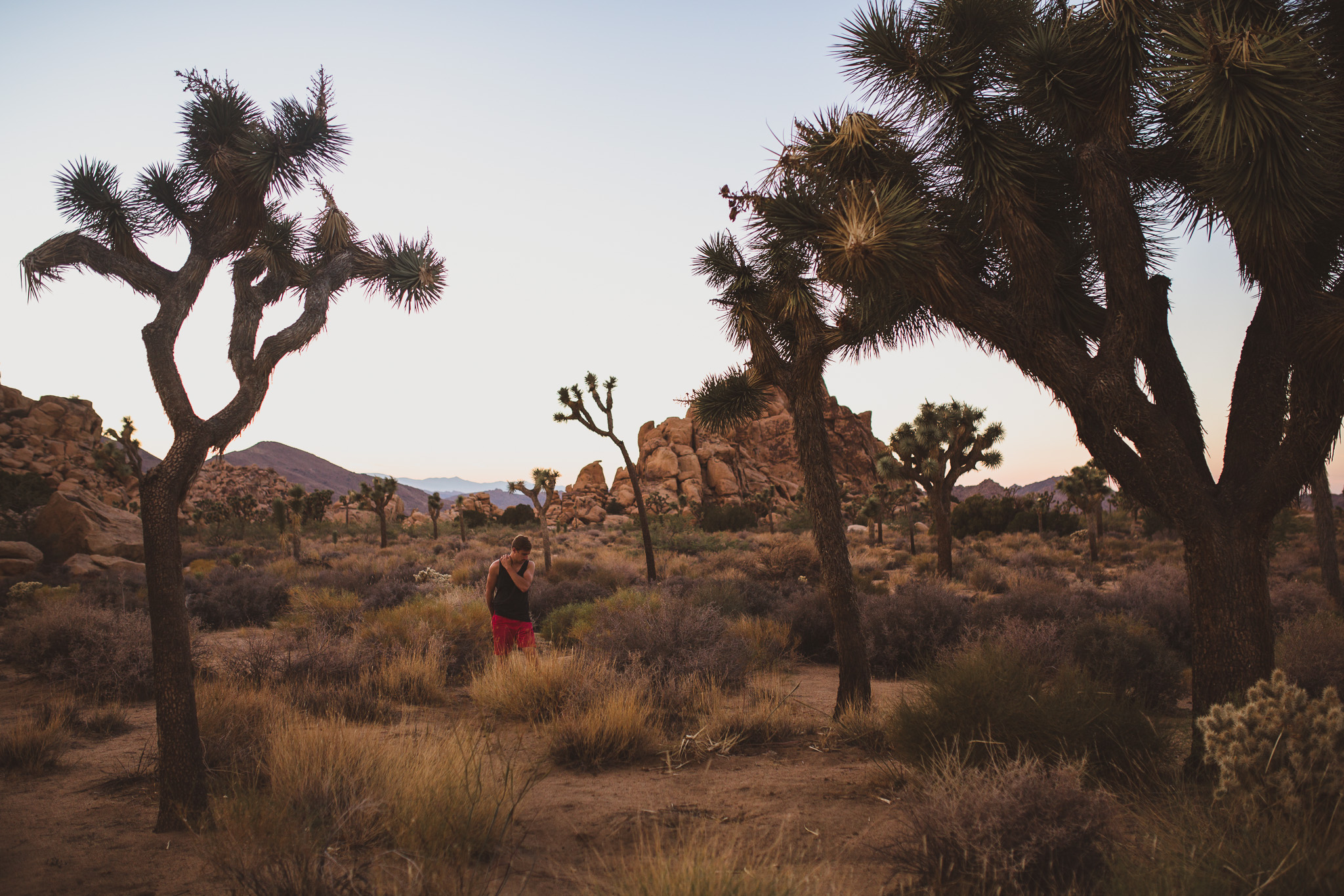 Joshue-tree-Jonathan-Kuhn-Photography