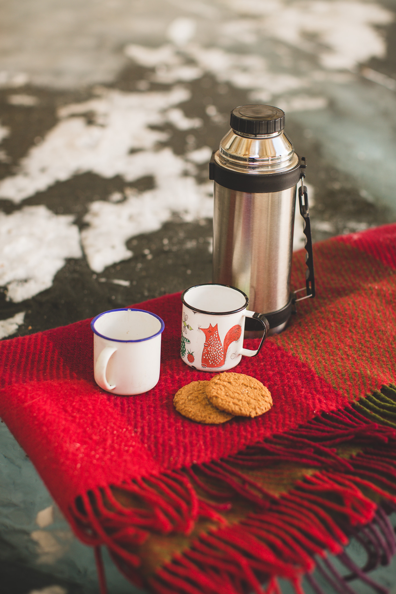 Winter-Picnic-styled-engagement-session