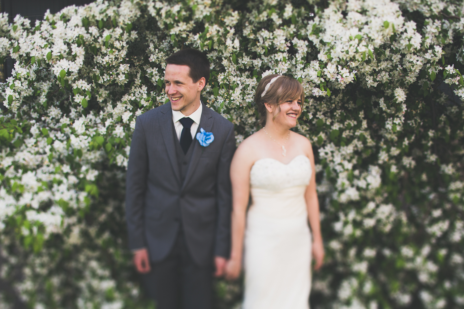spring-blossoms-wedding-photography