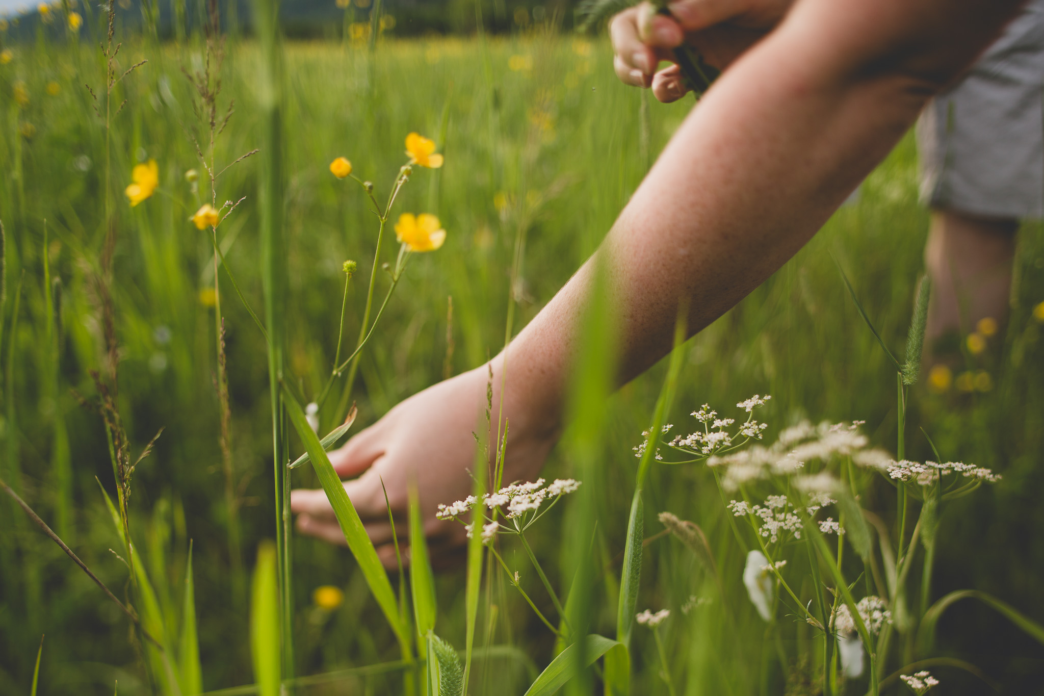 picking-flowers-in-field