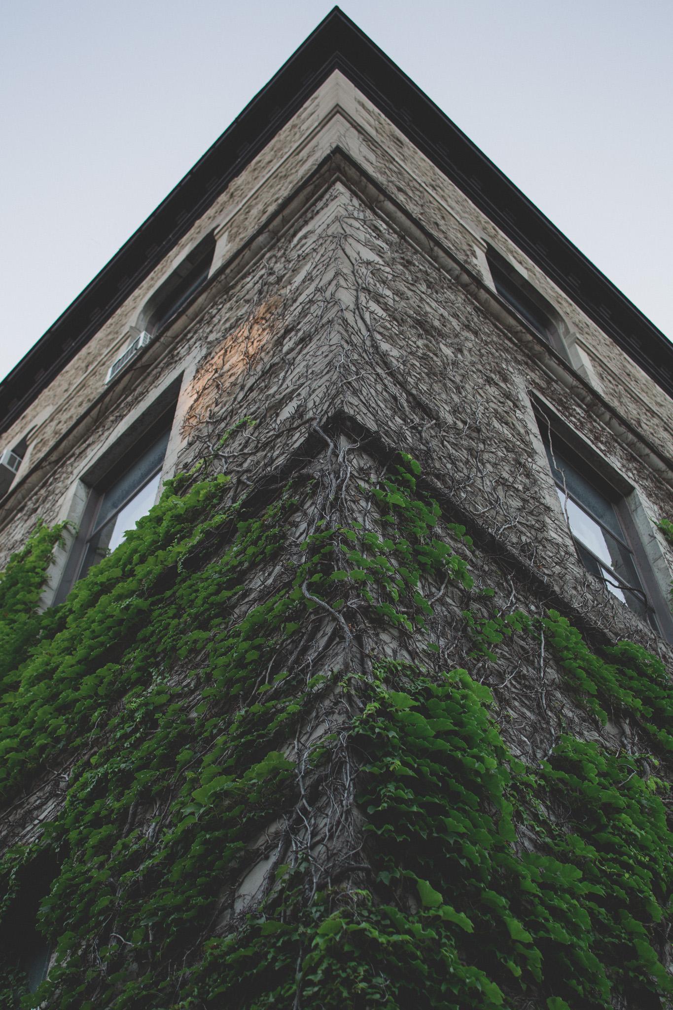 University-of-Ottawa-architecture