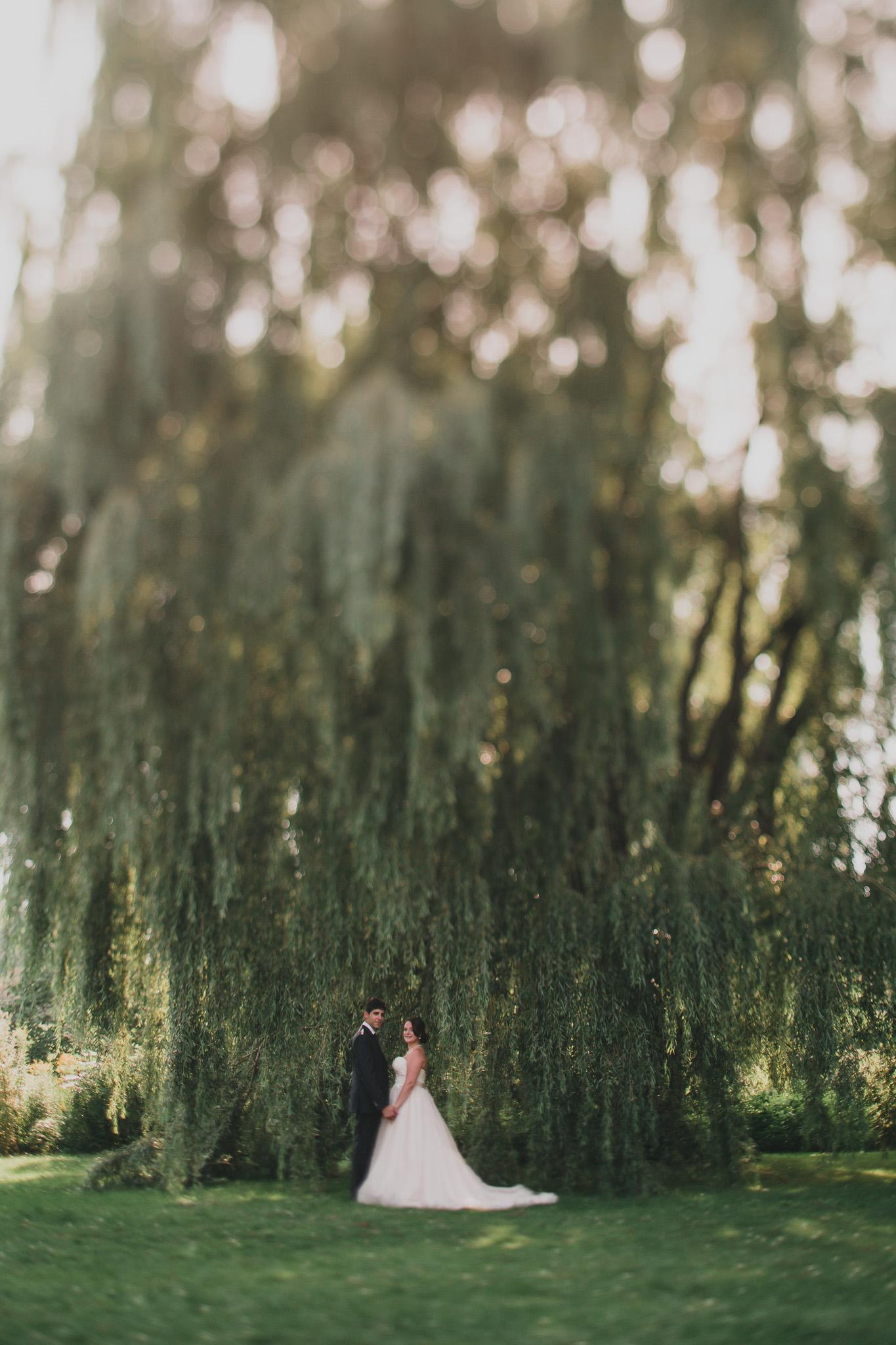 Dow's Lake Wedding Photo locations