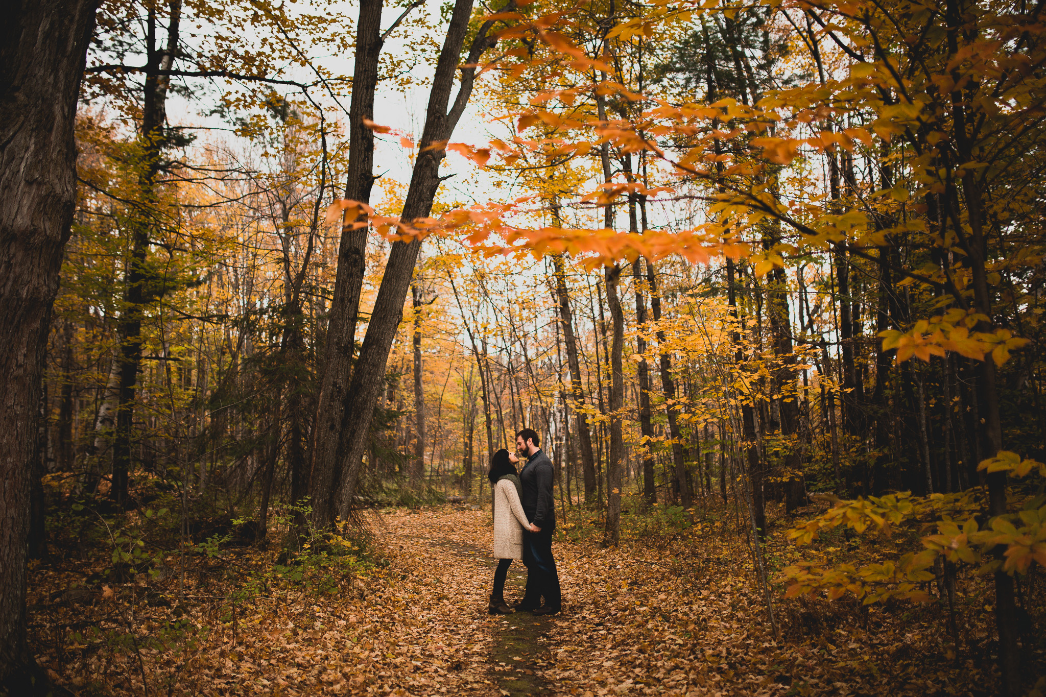 Fall Portraits in colourful ontario trees