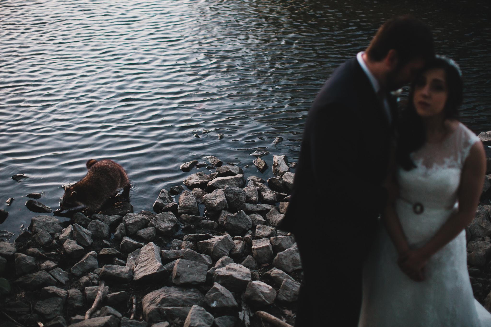 Photobombed wedding photos