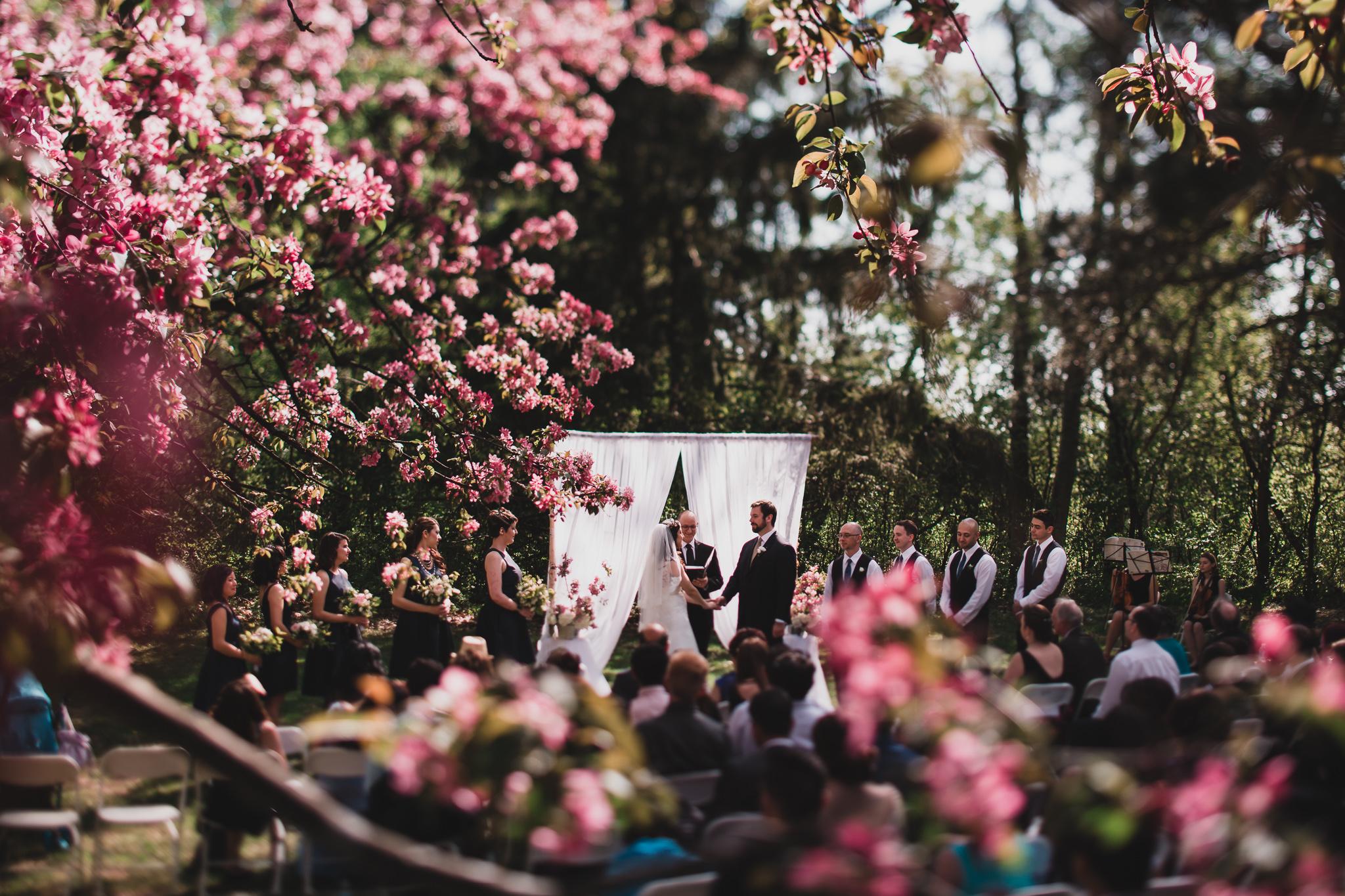 Cherry blossom wedding Jonathan Kuhn Photography