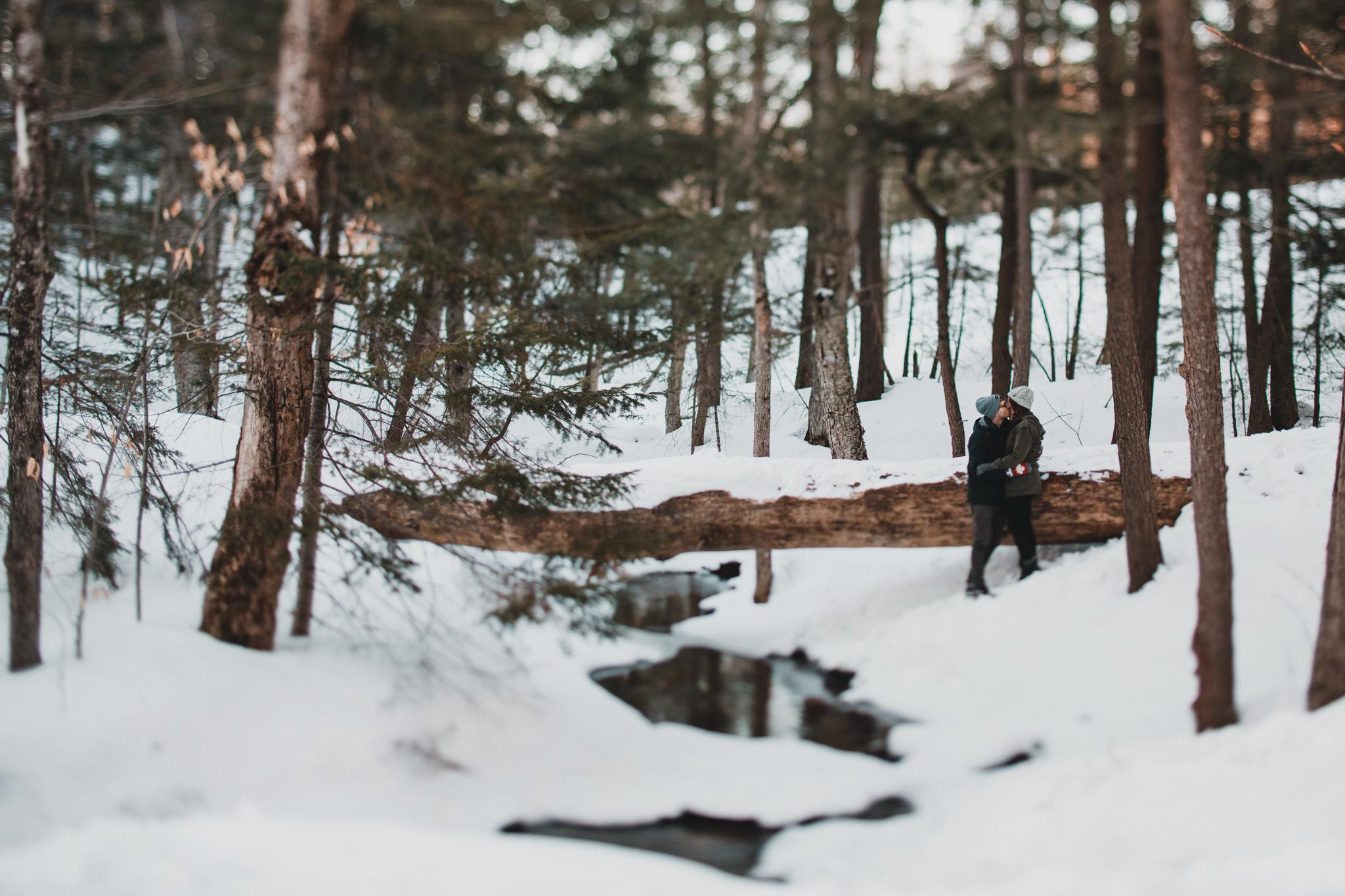 Nature inspired photography, Weddings in Ottawa