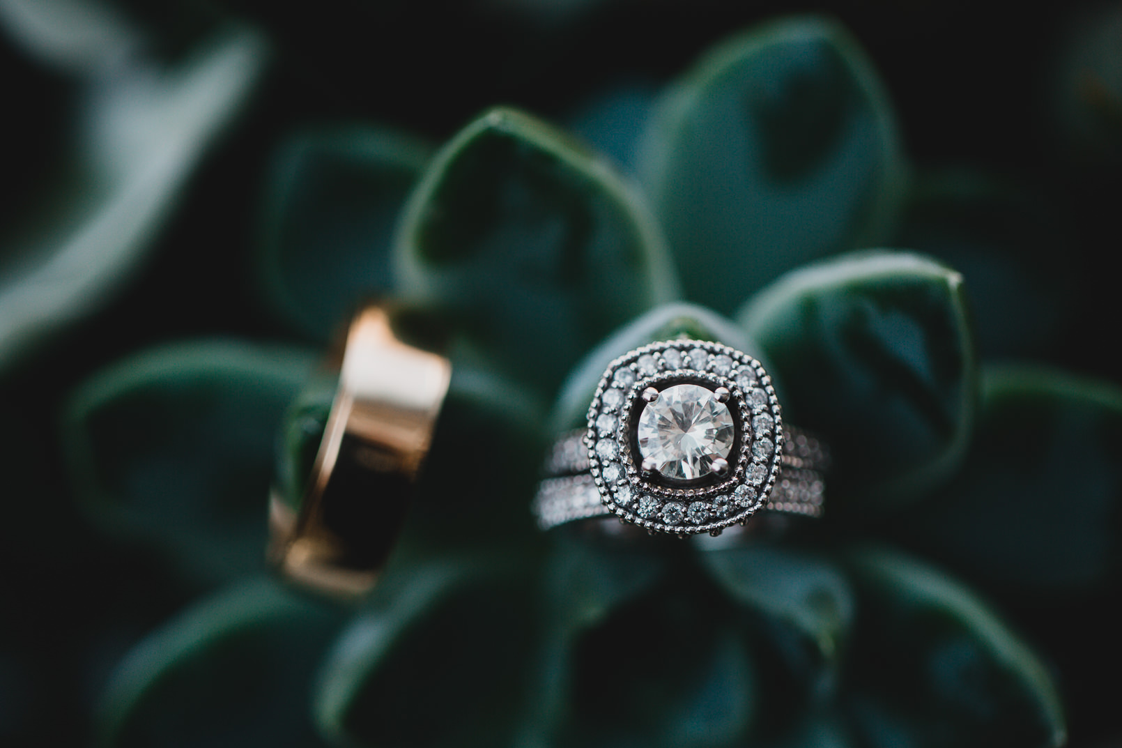 038-Jonathan-Kuhn-Photography-Wedding-_mini.jpg