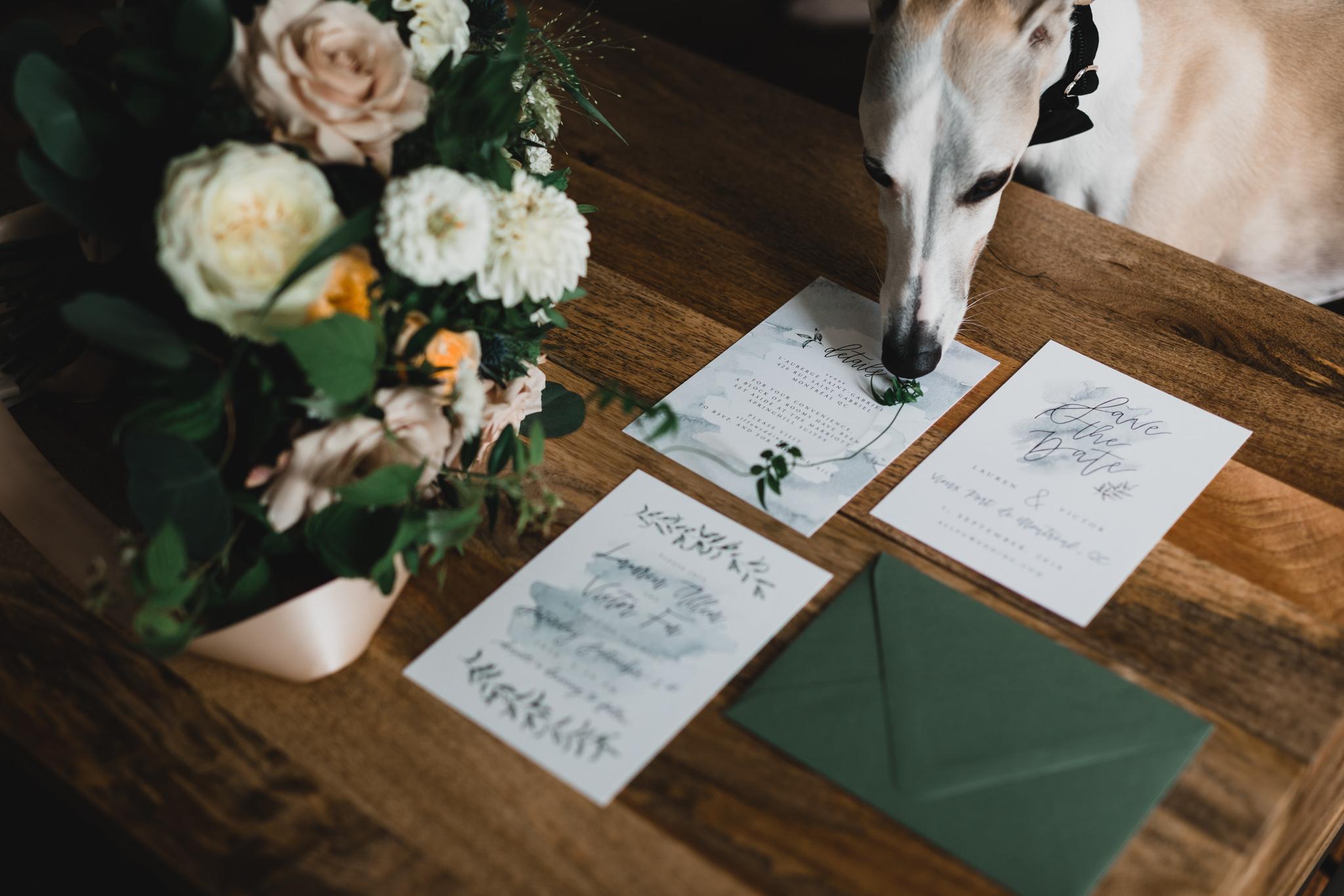 214-WEB-Jonathan-Kuhn-Photography-Lauren-Victor-Wedding-2599.jpg
