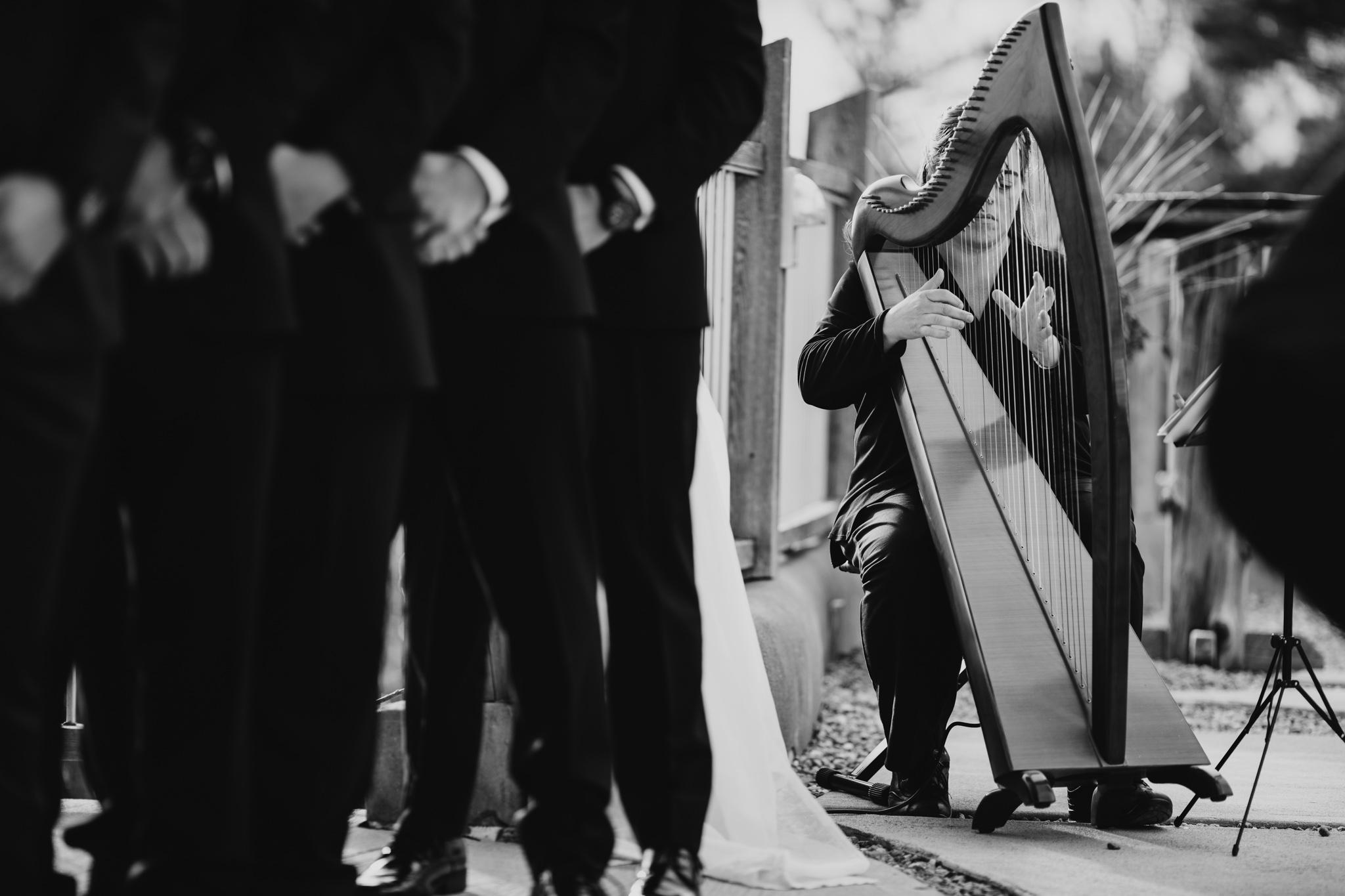 Ottawa harpist
