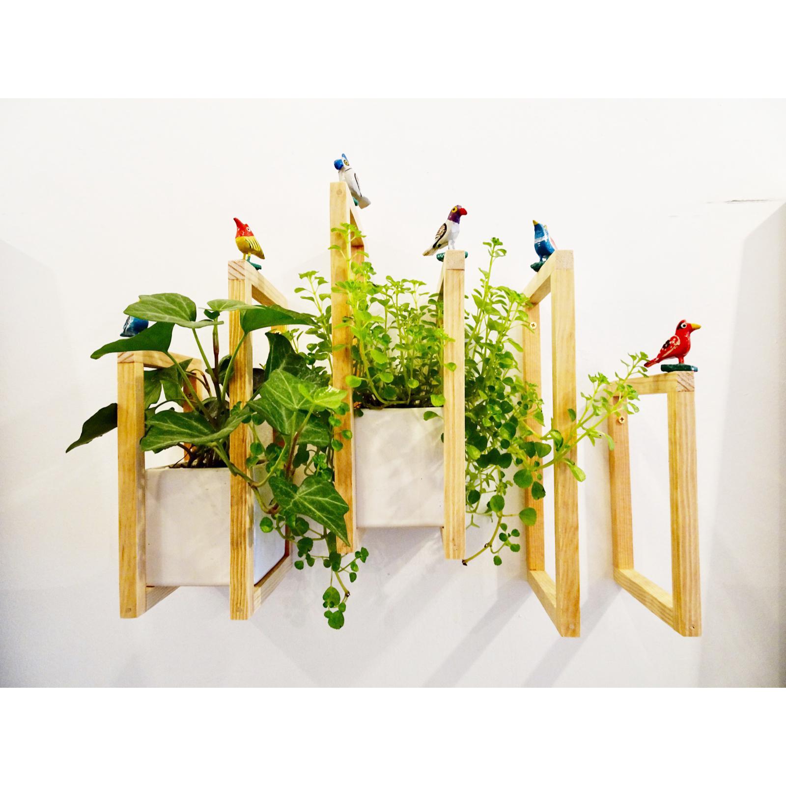 Wall Mounted Planter with Frames by Non Matsuura