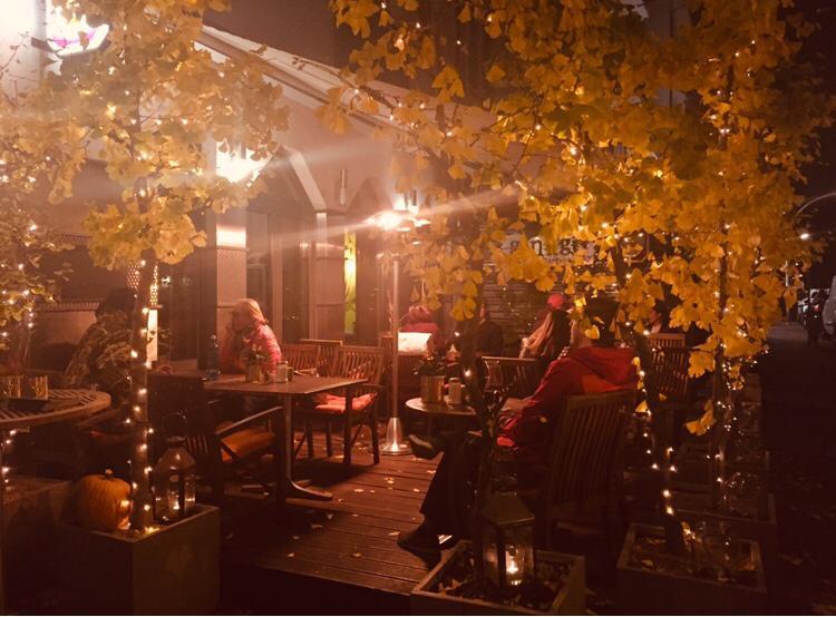 Ginkgo Herbst 1.jpeg