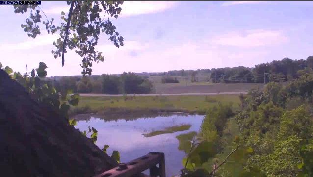 Screen Shot 2013-06-13 at 8.41.18 AM.png