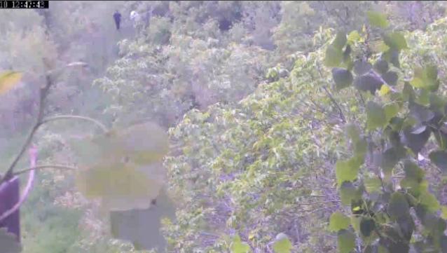 Screen Shot 2013-06-10 at 11.07.35 AM.png