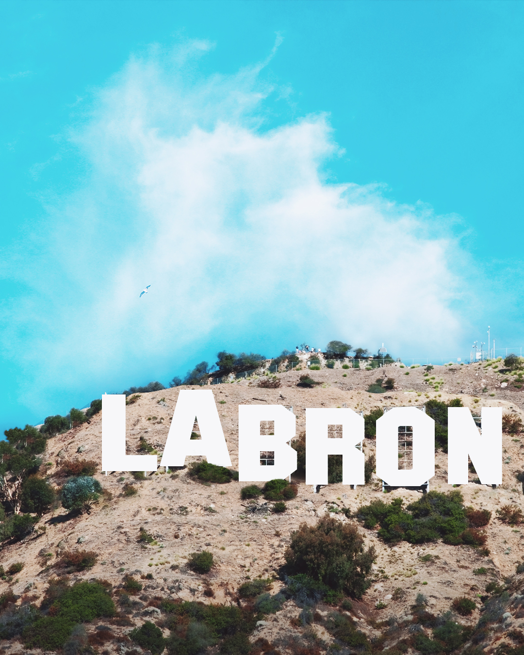 hollywood sign labron logo.jpg