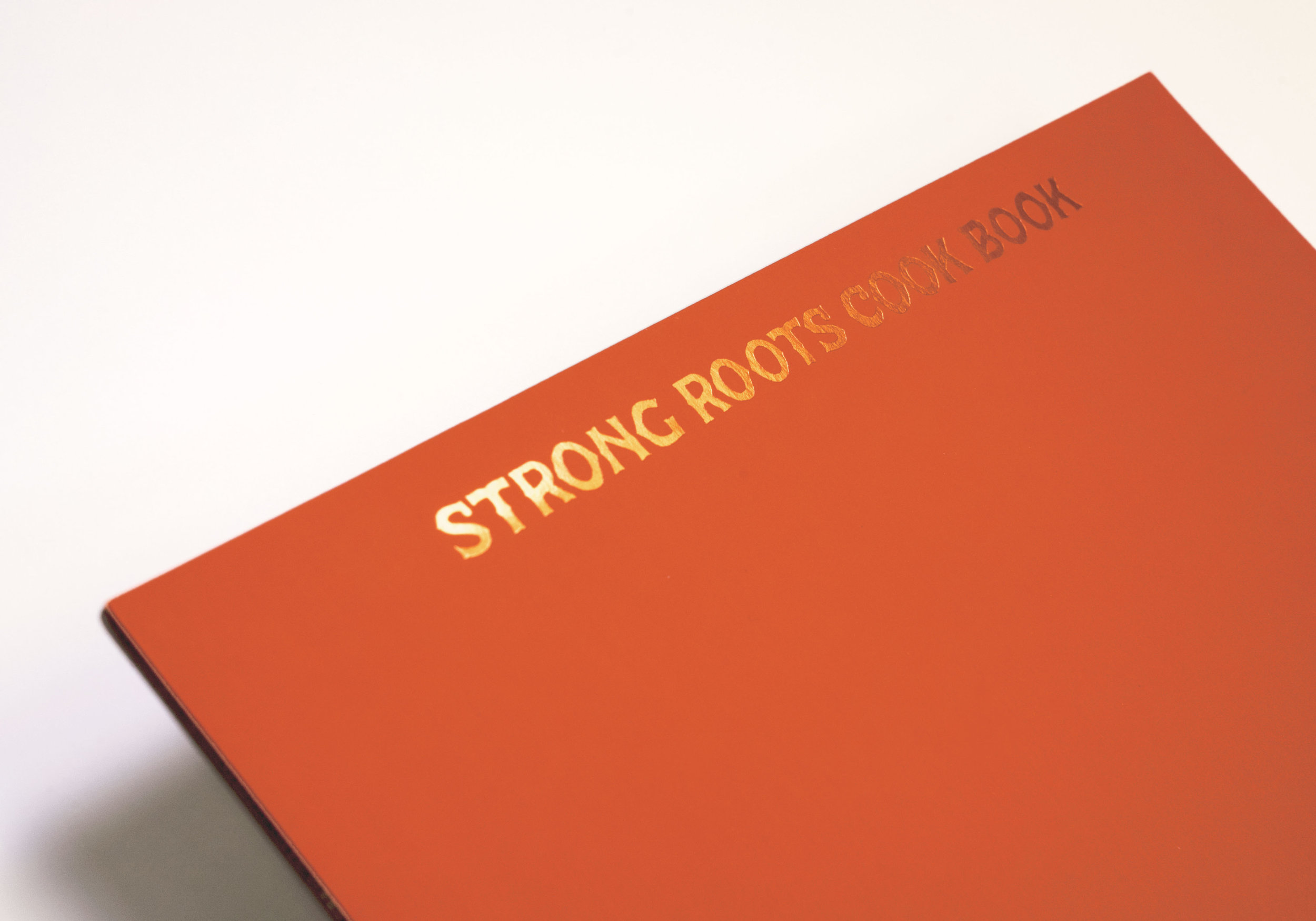 SR_Book_Stills_6.jpg