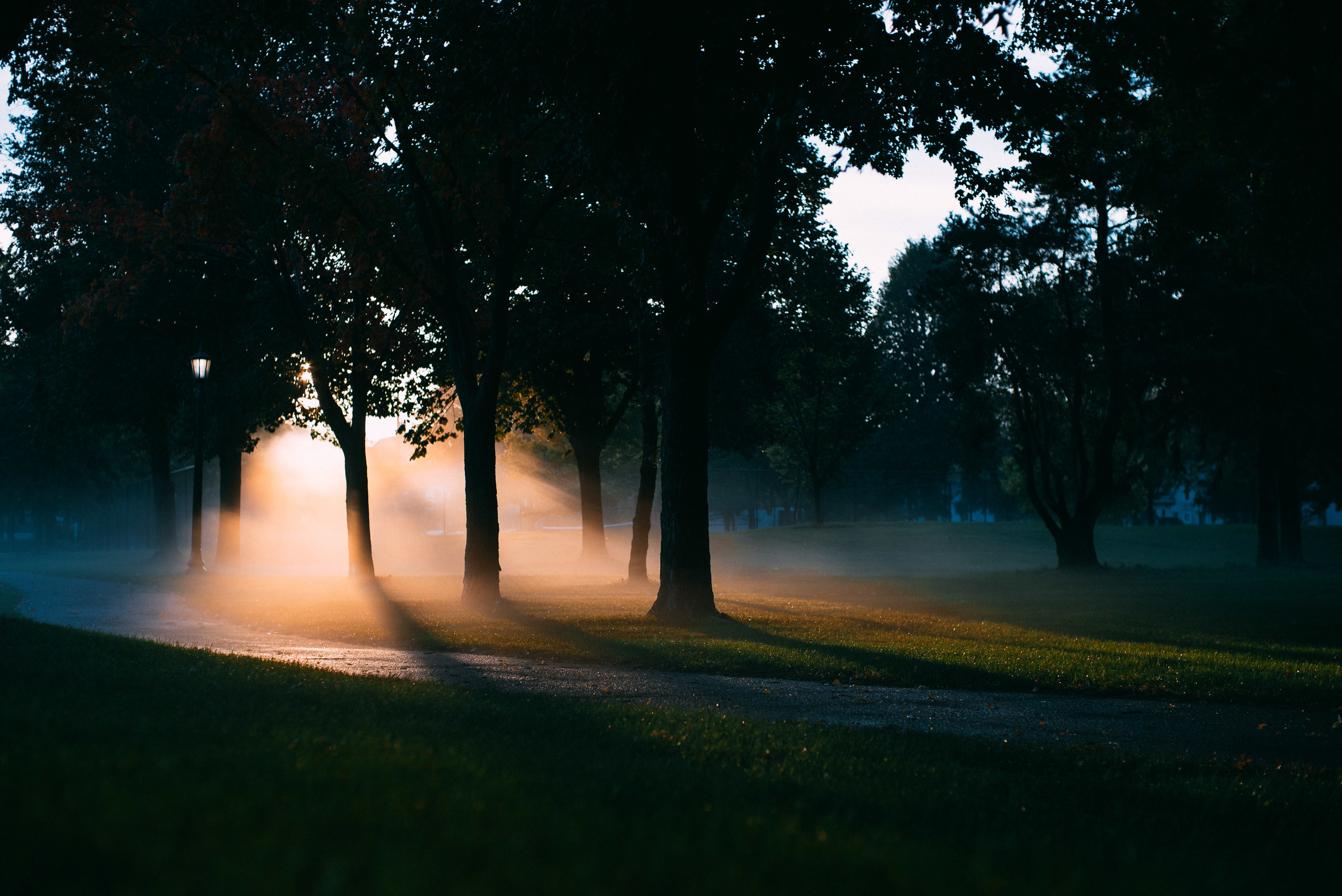 morning_fog.jpg