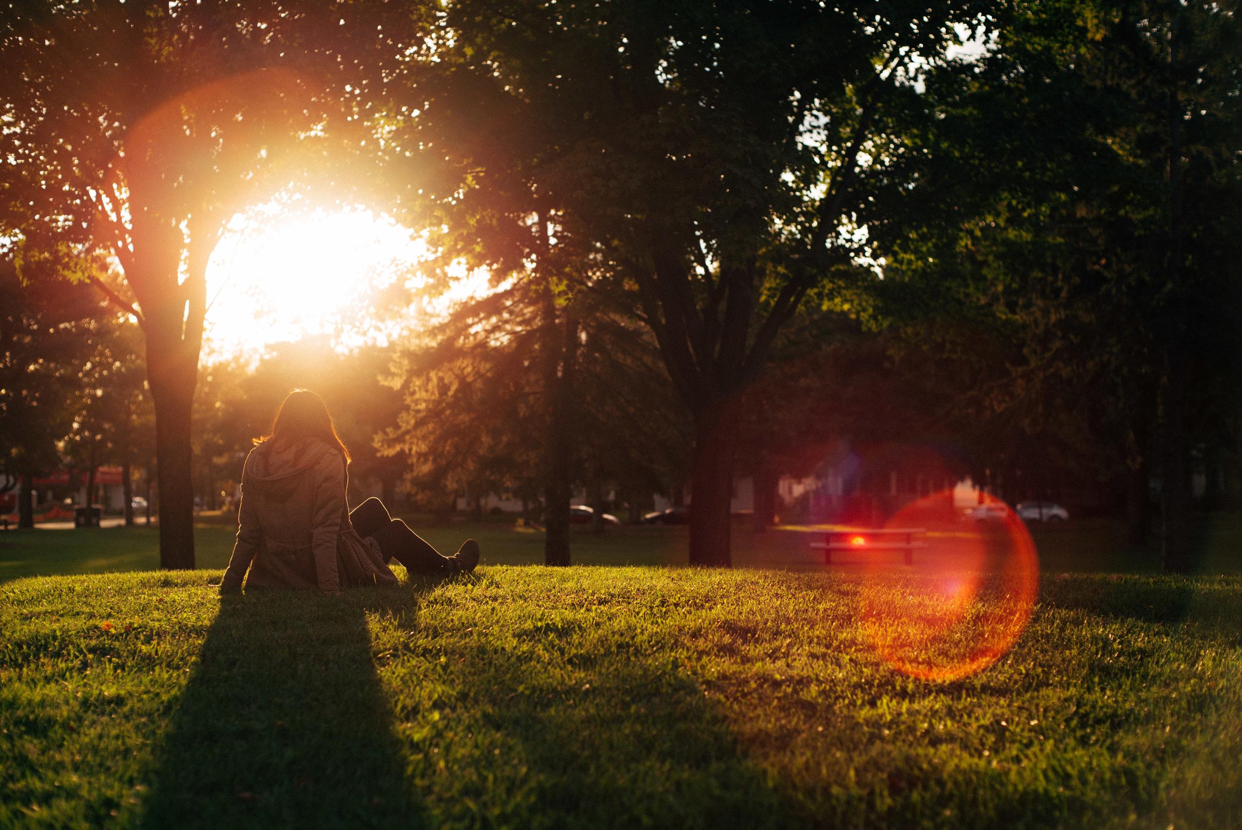 molly_sunset_fall.jpg