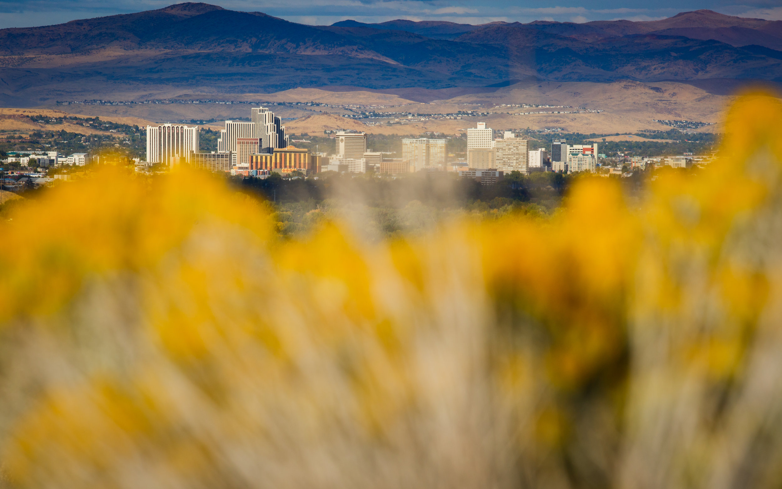 Reno, Nevada basking in some late afternoon golden light. 2017.