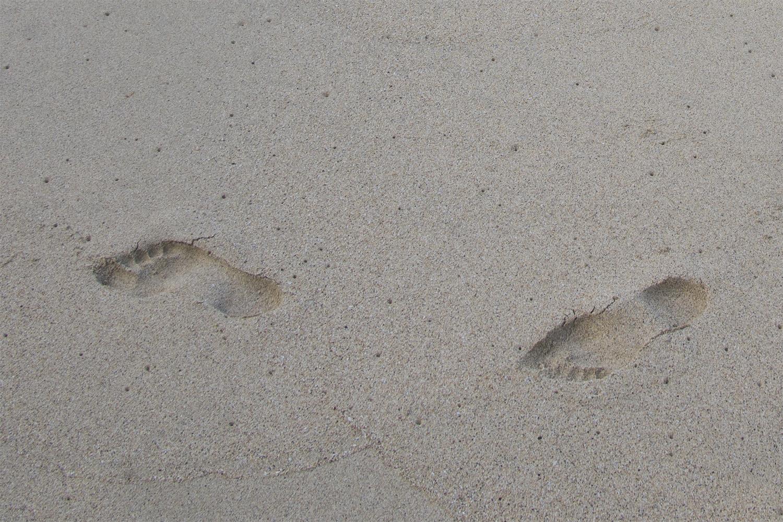 footprints2.jpg