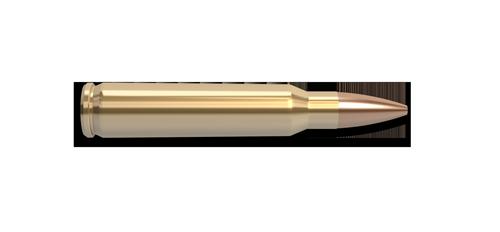 NoslerCustom 223 Rem Ammunition Cartridge