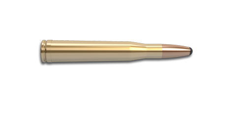 NoslerCustom 300 H&H Mag Ammunition Cartridge