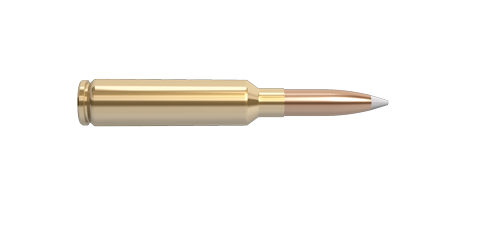NoslerCustom 6.5-284 Norma Ammunition Cartridge