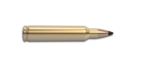 204 Ruger Rifle Cartridge