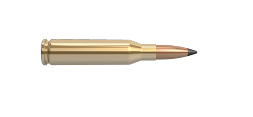 260 Remington Rifle Cartridge