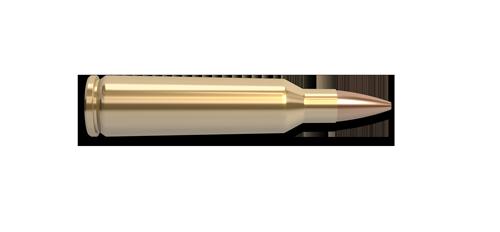 22-250 Remington Fast Twist Rifle Cartridge