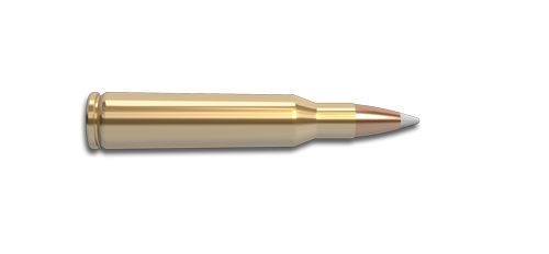 257 Roberts &  257 Roberts +P Rifle Cartridge