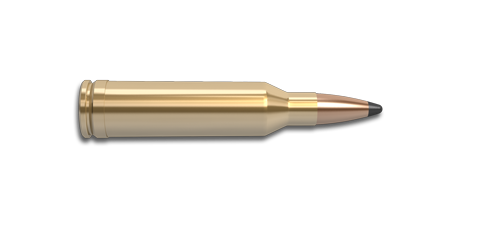 6.5 Remington Magnum Rifle Cartridge