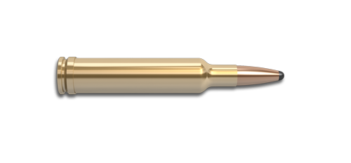 270 Weatherby Magnum Rifle Cartridge