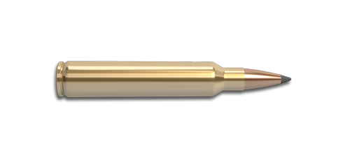 300 Remington Ultra Magnum Rifle Cartridge