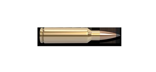 300 Winchester Short Magnum (WSM) Rifle Cartridge