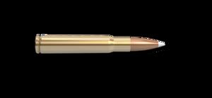 338-06 A-Square Rifle Cartridge