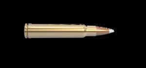 340 Weatherby Magnum Rifle Cartridge