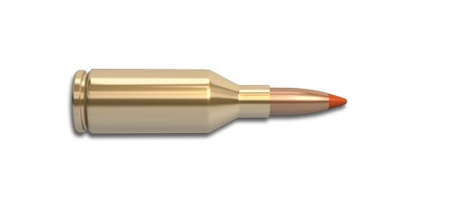 223 Winchester Super Short Magnum (WSSM) Rifle Cartridge