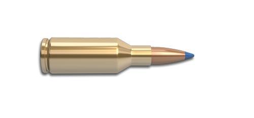25 Winchester Super Short Magnum (WSSM) Rifle Cartridge