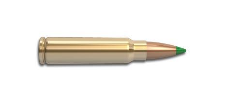 300 Savage Rifle Cartridge