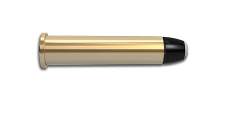 45-70 Government Rifle Cartridge