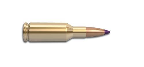 6mm Bench Rest Remington Rifle Cartridge